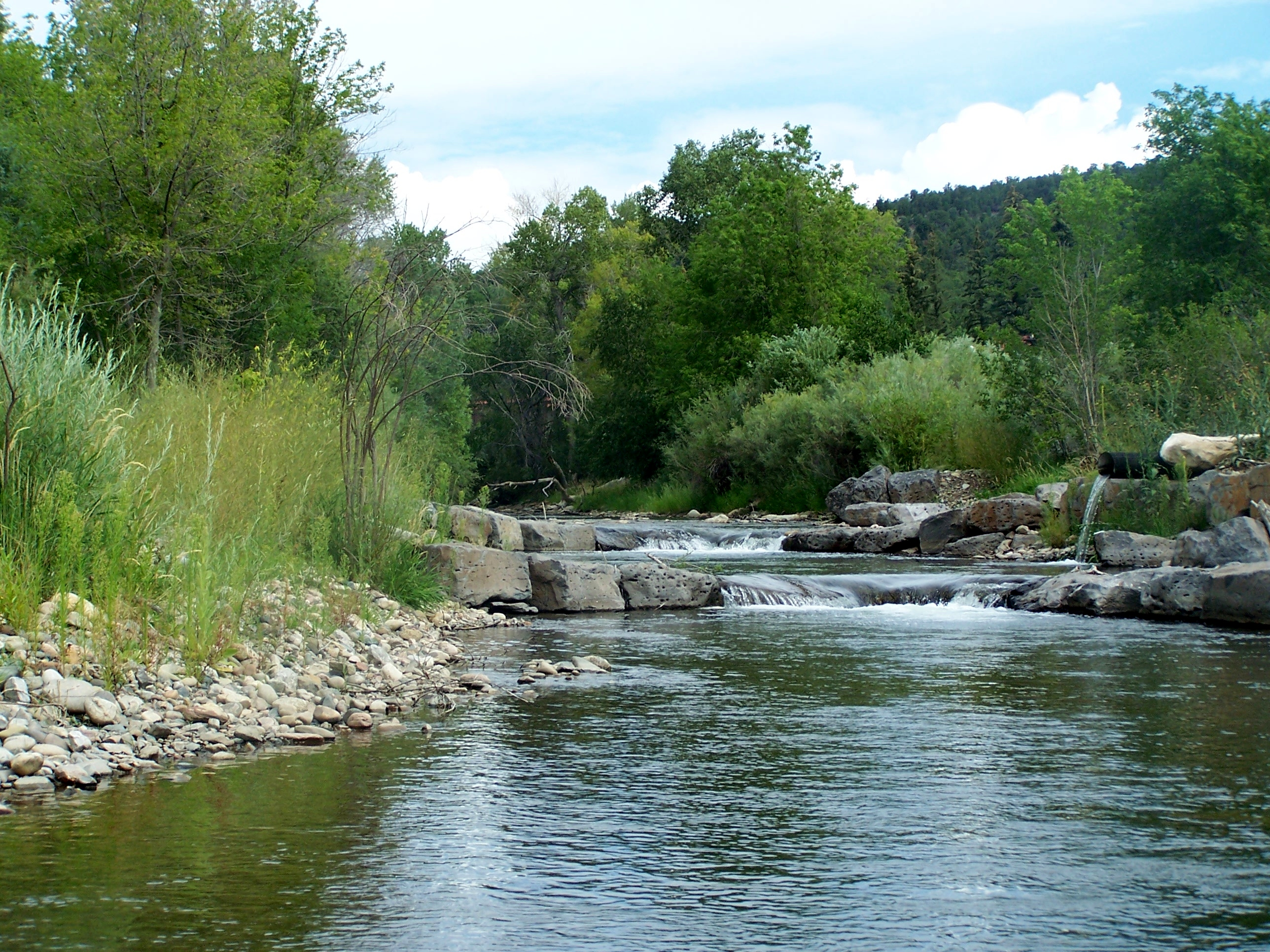 Our restoration projects upper pecos watershed association for Pecos river fishing