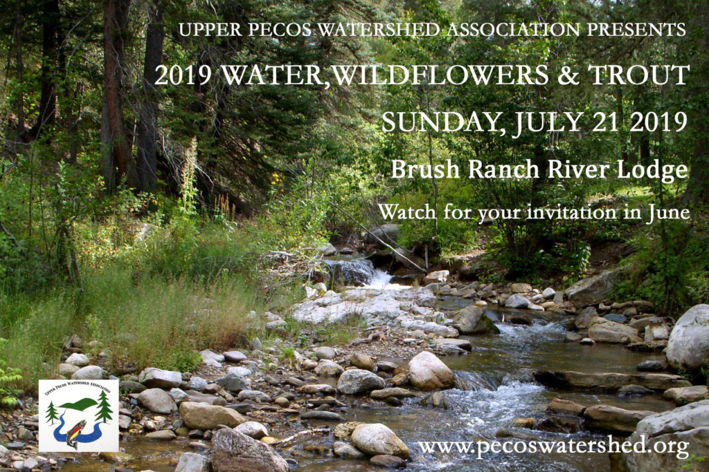 Water Wildflowers and Trout 2019
